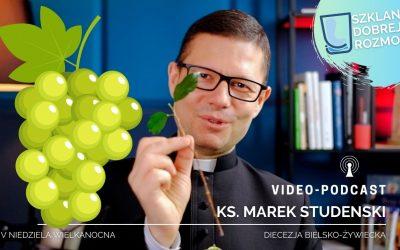 Jak wydawać w życiu dobre owoce? V niedziela WIELKANOCNA – medytacja – ks. Marek Studenski