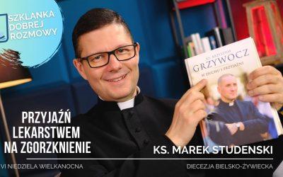 Przyjaźń lekarstwem na zgorzknienie. – medytacja – ks. Marek Studenski